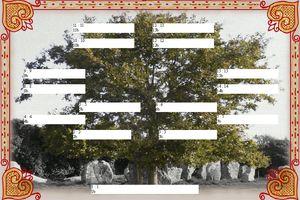 broderie bretonne,arbre genealogique gratuit � imprimer