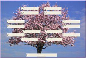 magnolia, arbre genealogique gratuit à imprimer