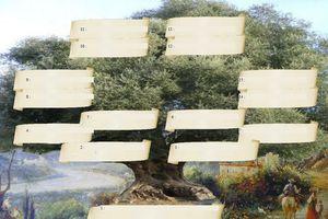 olivier, bord du Paillon,arbre genealogique gratuit � imprimer