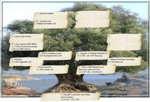 olivier, arbre genealogique gratuit � imprimer